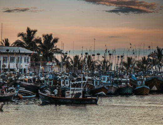 Mirissa Harbour,Sri Lanka