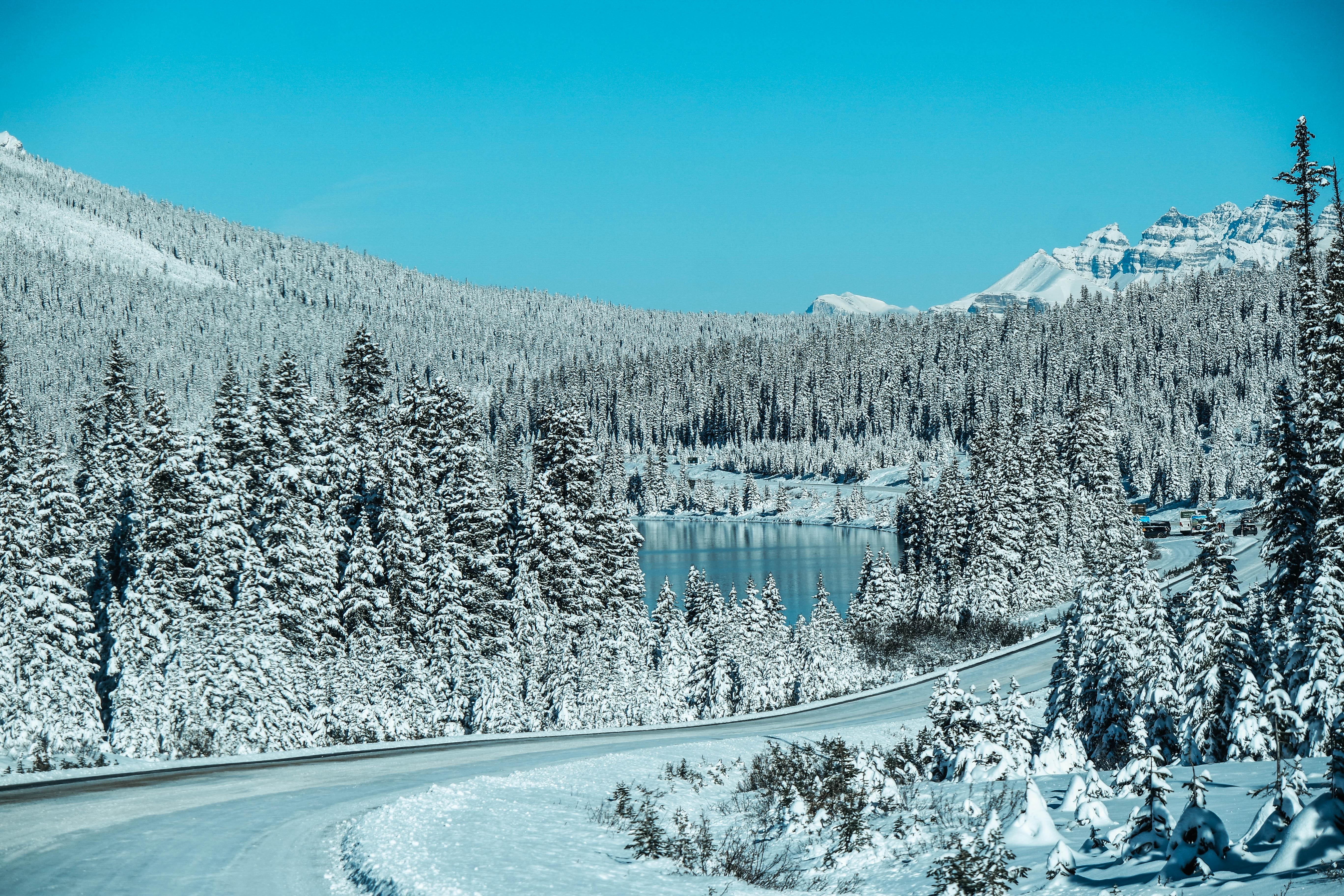 Icefield Parkway looks like Narnia