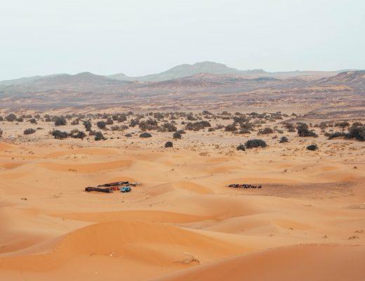 Tentcamp in the Sahara Desert