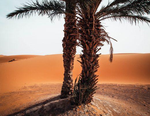 Sahara Dessert, Morocco