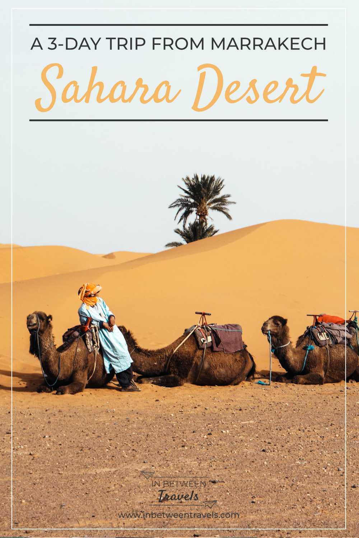 3 day Sahara Trip from Marrakech