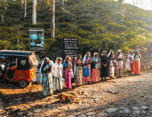 Tea workers near Ella, Sri Lanka