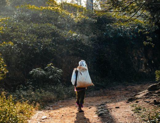 Tea worker near Ella, Sri Lanka