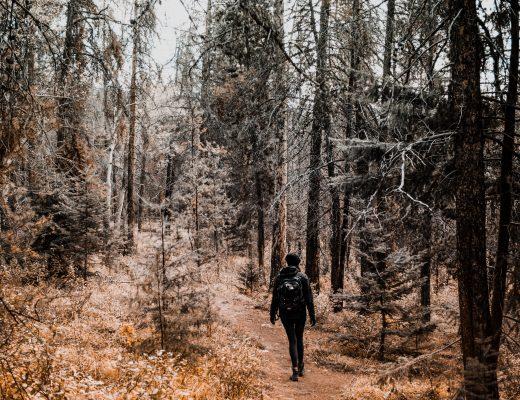 Hike around Pyramid Lake, Jasper, Canada