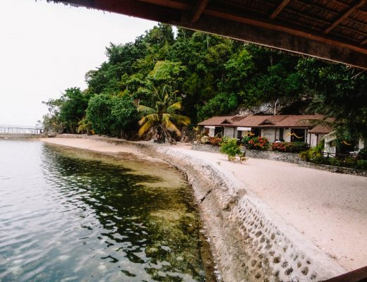 Travel Guide to the Togean Islands - Black Marlin