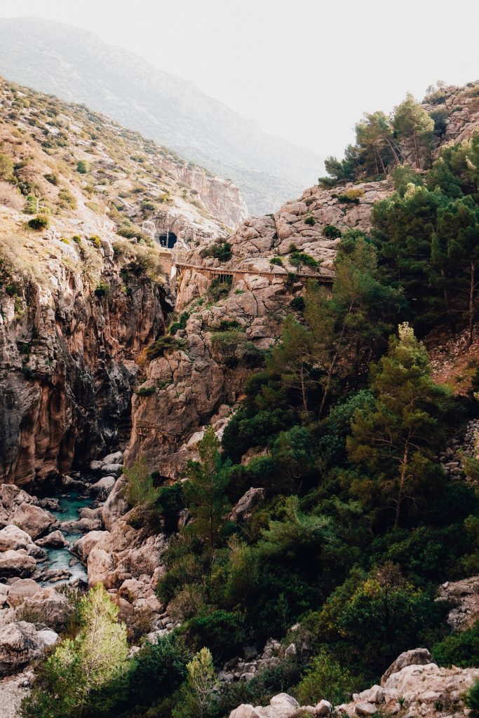 Daytrip from Malaga in Andalusia