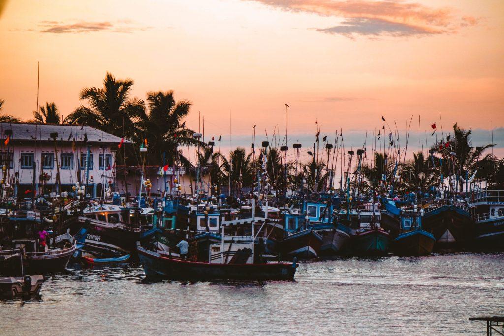 Mirissa Harbour, Sri Lanka
