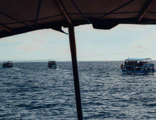 Whale Tour, Raja, Mirissa, Sri Lanka