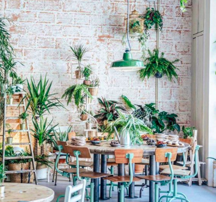 Fauna & Flora, Brunch in Lisbon