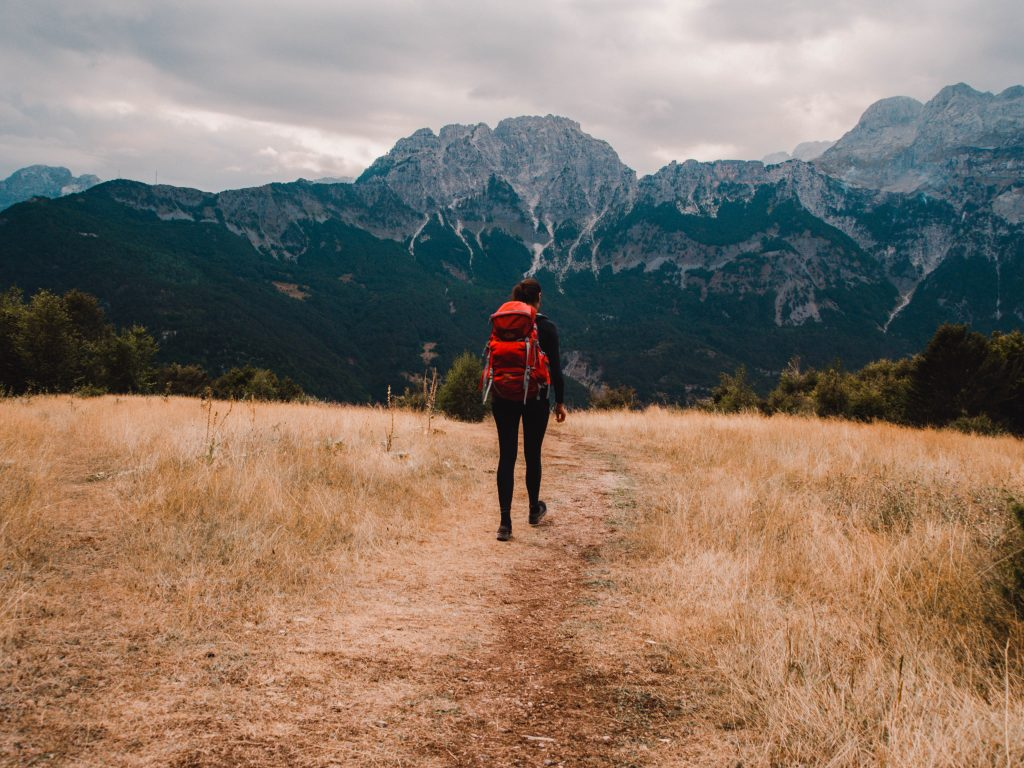 Discovering the meadows in the Albanian Alps