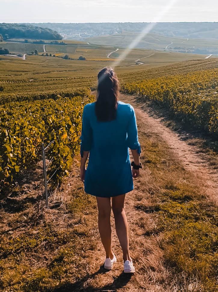 Strolling around the fields at Hautevillers, Champagne Region