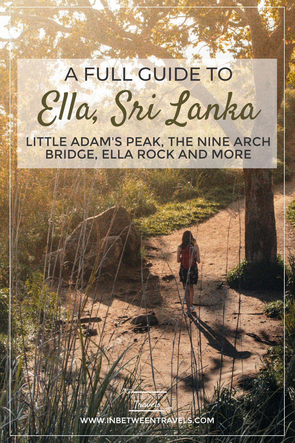 In and Around Ella, A Full Travel Guide