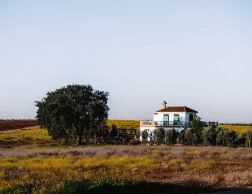 Roadtripping in Andalusia, Spain