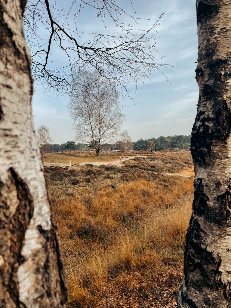 Landgoed Heidestein- Bornia, Utrecht