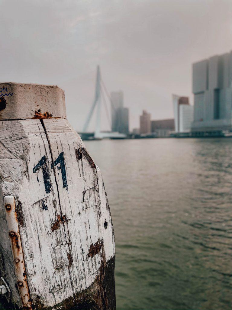 Erasmusbridge, Erasmusbrug, Nieuwe maasparcours, Rotterdam