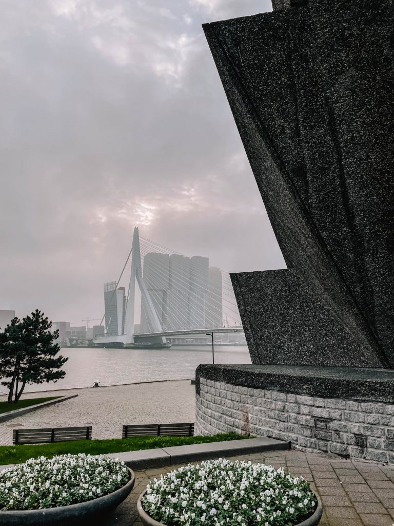De Boeg & Erasmusbrug, Rotterdam, Maas